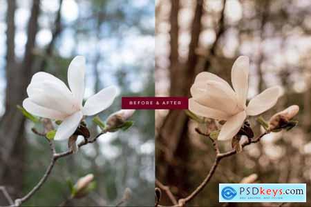Moody Garden Lightroom Preset 6169874