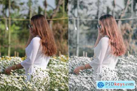 Quanda Mobile and Desktop Lightroom Presets