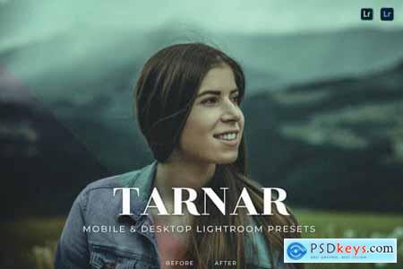Tarnar Mobile and Desktop Lightroom Presets