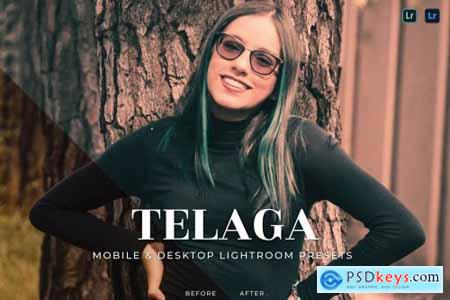 Telaga Mobile and Desktop Lightroom Presets