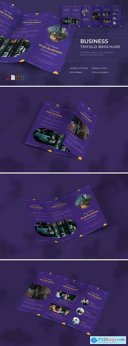 Prob Business - Trifold Brochure
