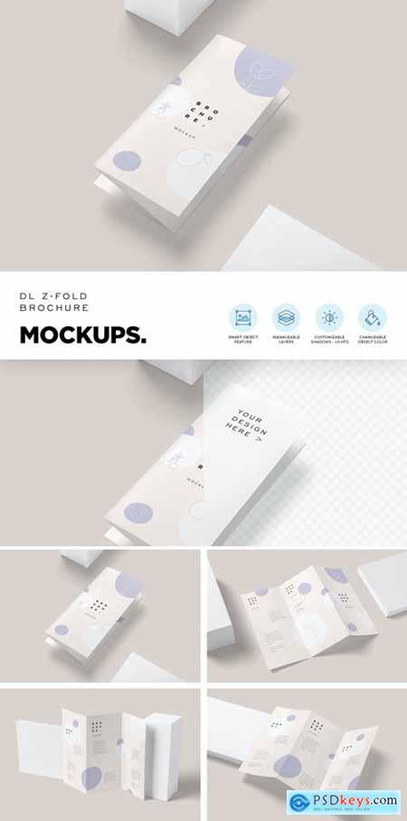 DL Size Z Fold Flyer Mockups