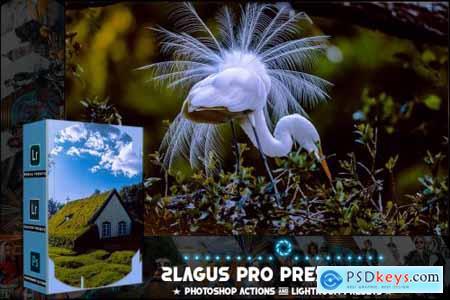 PRO Presets - V 85 - Photoshop & Lightroom