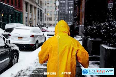 Pantera Photoshop Action & Lightrom