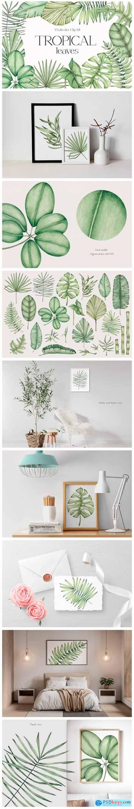 Watercolor ClipArt Tropical Leaves 12857510