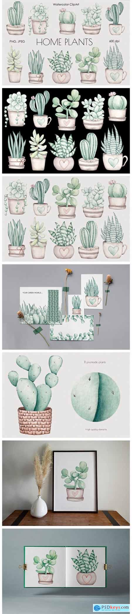 Watercolor ClipArt Home Plants 11785135