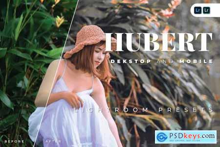 Hubert Desktop and Mobile Lightroom Preset