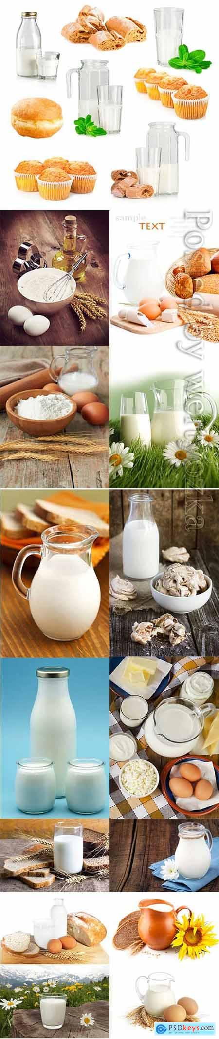 Milk and dairy products stock photo