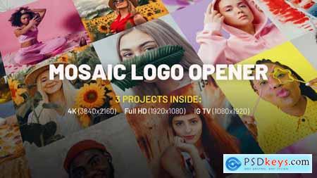 Mosaic Logo Opener 32004415