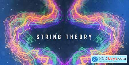 String Theory 20507224