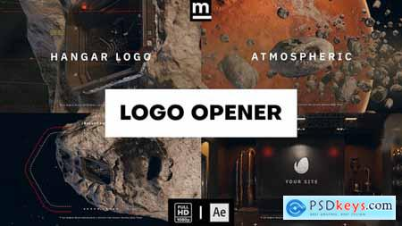 Hangar Logo Opener 32861674
