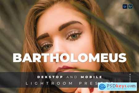 Bartholomeus Desktop and Mobile Lightroom Preset
