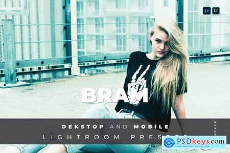 Bram Desktop and Mobile Lightroom Preset