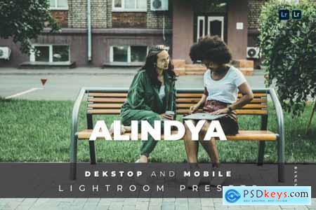 Alindya Desktop and Mobile Lightroom Preset