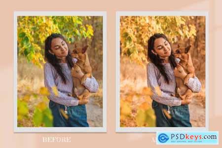 Vibrant Autumn Lightroom Photoshop 6341178
