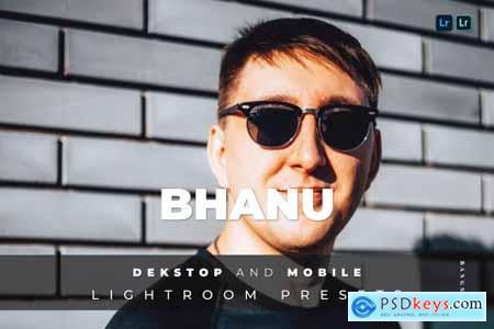 Bhanu Desktop and Mobile Lightroom Preset
