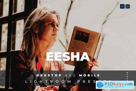 Eesha Desktop and Mobile Lightroom Preset