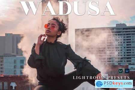 Wadusa Mobile and Desktop Lightroom Presets