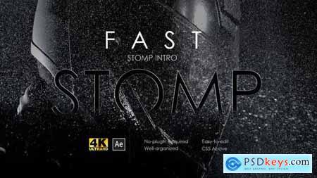 Stomp Intro 22507759