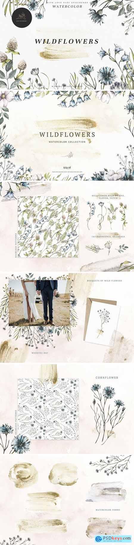 Watercolor Botanical Wildflowers