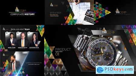 3D Triangle Concept Corporate Profile 21482481