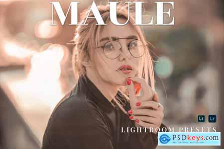 Maule Mobile and Desktop Lightroom Presets