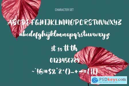 Hopipolla Script Font