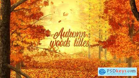 Autumn Woods Titles 33925235